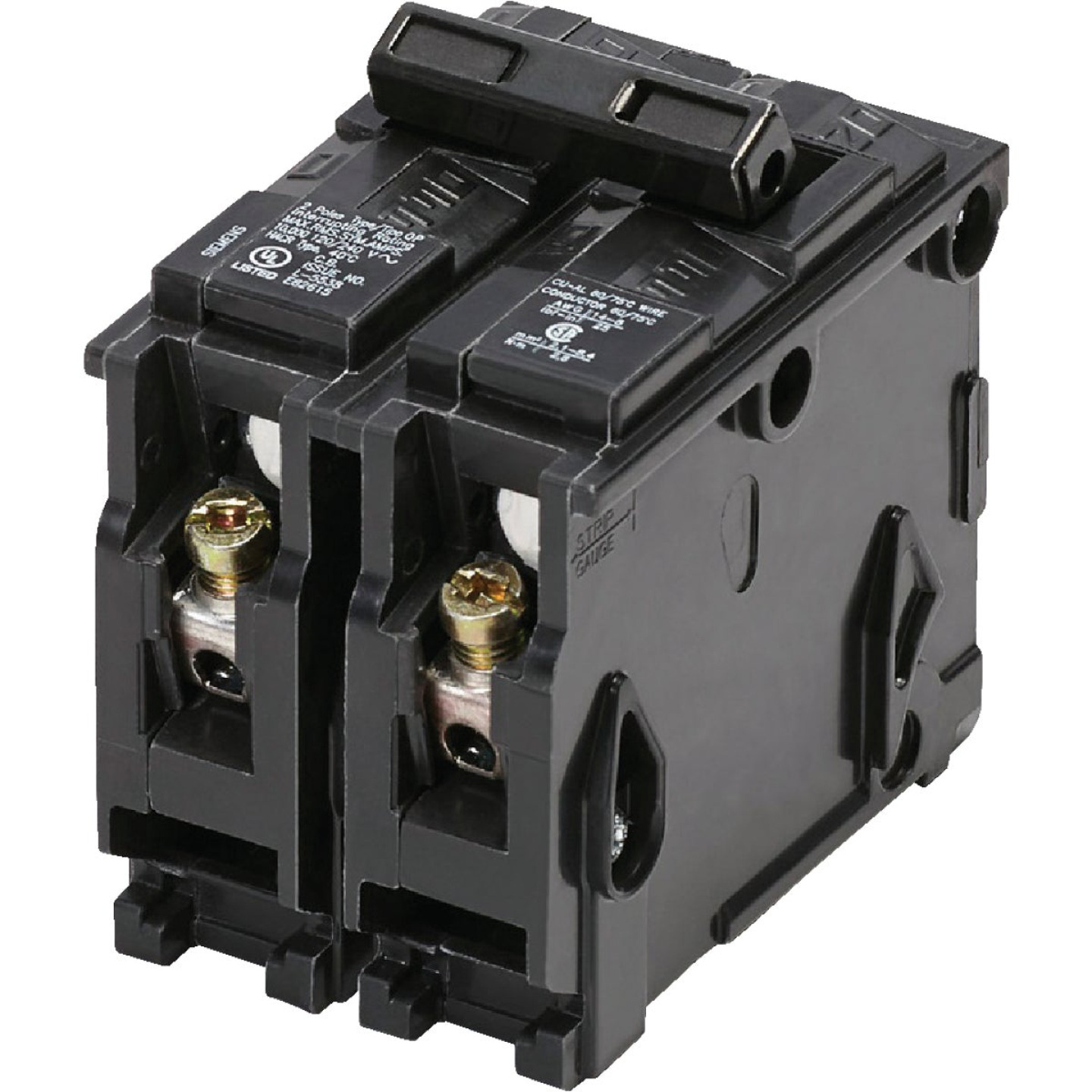Connecticut Electric 60A Double-Pole Standard Trip Interchangeable Packaged Circuit Breaker Image 1